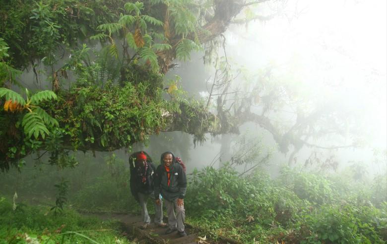 Stigen går genom förtrollande molnskog på 3000 meters höjd