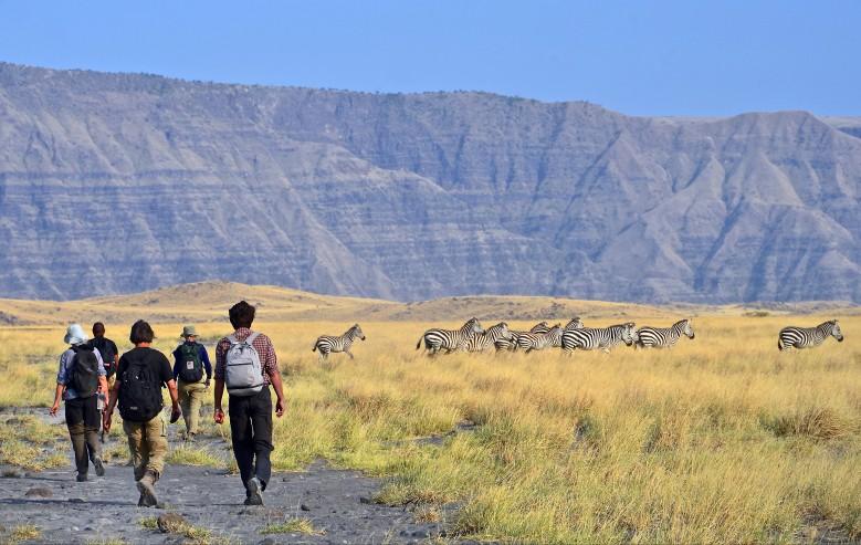 Vandring på savannen
