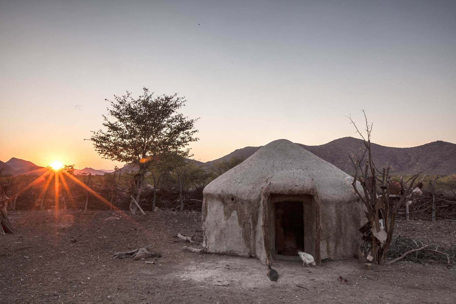 Himba Homestead